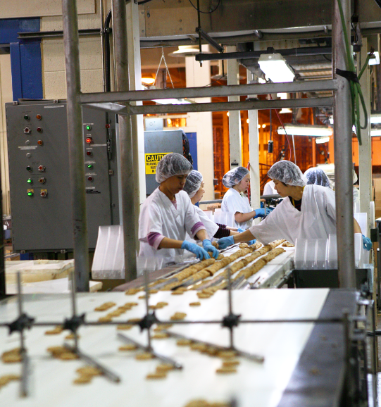 Making gluten-free cookies production line
